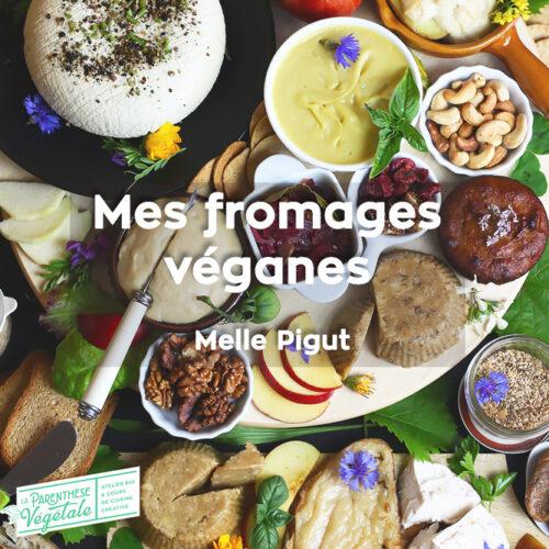 Formation en vidéo : mes fromages véganes