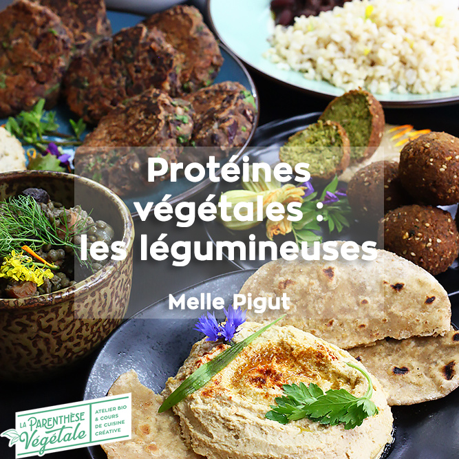 Formation Protéines Végétales : les légumineuses