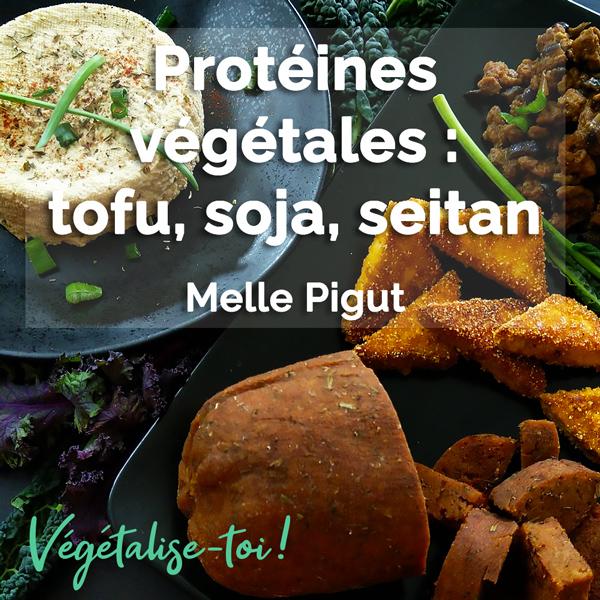 Cours de cuisine Tofu, protéines de soja texturées et seitan
